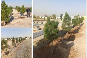 فضای سبز آرامستان بهشت فاطمه (س) تقویت شد