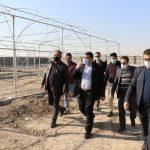روزهای پرکار شهرداری صالحیه برای افتتاح بهنگام چندین پروژه شاخص و زیربنایی
