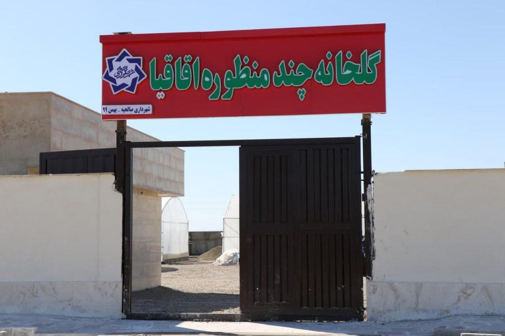 اولین گلخانه شهر صالحیه در آستانه افتتاح و بهره برداری