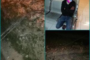 دستگیری سارقان در حین ارتکاب جرم