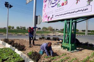 گلکاری بلوار امامزاده باقر(ع) از محصولات گلخانه سبز اقاقیا