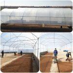 پروژه گلخانه؛ یک قدم تا افتتاح