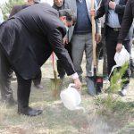 آیین تکریم محیط زیست با اجرای پویش مردمی ِ «من باغبانم»